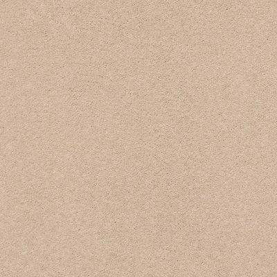 Anderson Tuftex Second Glance Cocoa Sand 00773_ZZ058