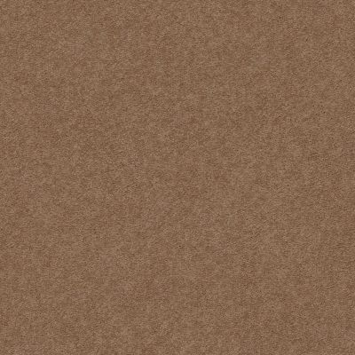 Anderson Tuftex Second Glance Mystic Brown 00775_ZZ058
