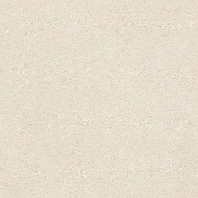 Anderson Tuftex Classic Beauty Soft Chamois 00121_ZZ059