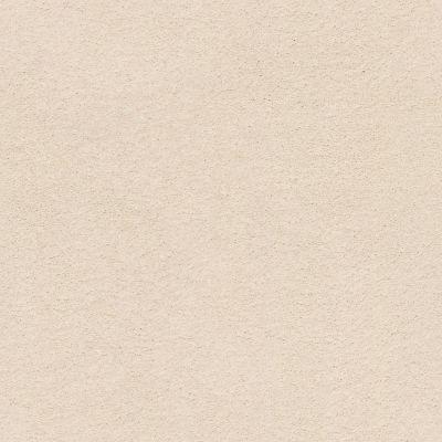Anderson Tuftex Classic Beauty Windswept 00222_ZZ059