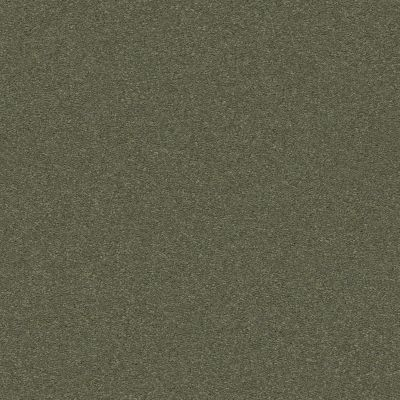 Anderson Tuftex Classic Beauty Dynasty Green 00356_ZZ059