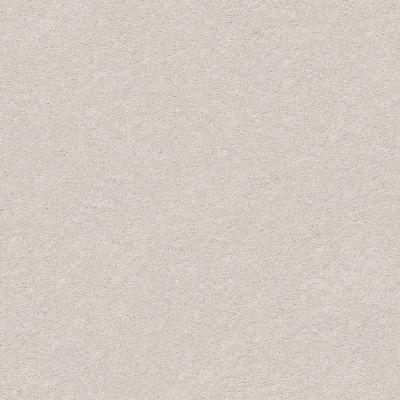 Anderson Tuftex Classic Beauty Platinum 00552_ZZ059