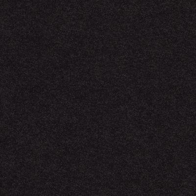Anderson Tuftex Classic Beauty Tuxedo 00559_ZZ059
