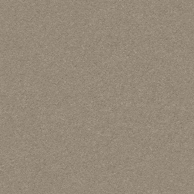Anderson Tuftex Classic Beauty Elephant Ear 00575_ZZ059