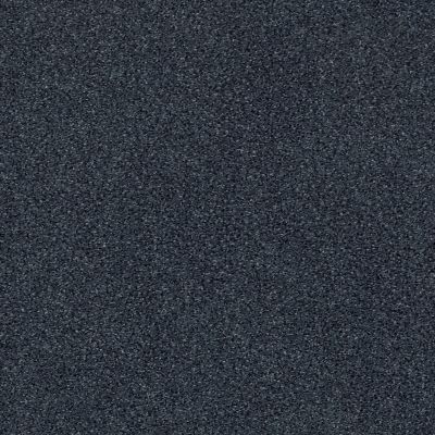 Anderson Tuftex Serenity Cove Blue Jeans 00458_ZZ060