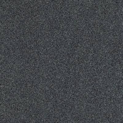 Anderson Tuftex Serenity Cove Chic Gray 00548_ZZ060