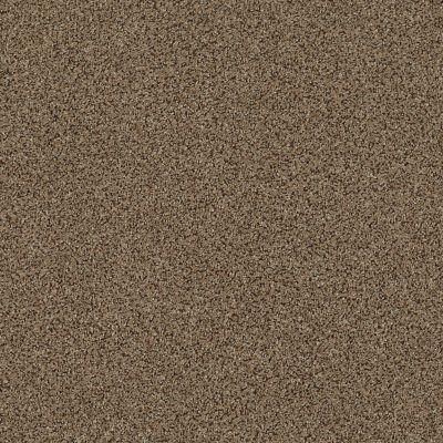 Anderson Tuftex Serenity Cove Mystic Brown 00775_ZZ060