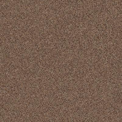 Anderson Tuftex Fair Isle Mystic Brown 00775_ZZ061