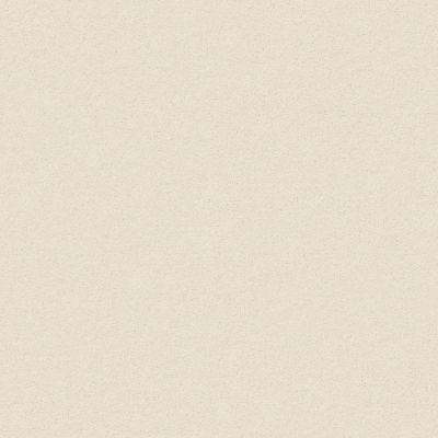 Anderson Tuftex Perfect Choice Soft Chamois 00121_ZZ064