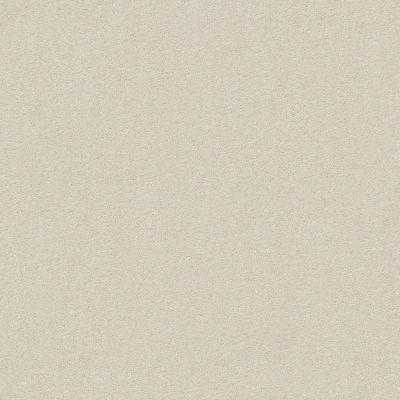 Anderson Tuftex Perfect Choice Misty Dawn 00151_ZZ064