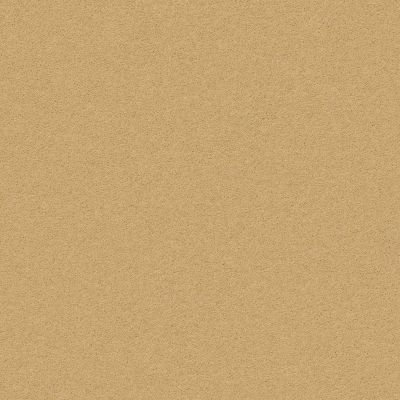Anderson Tuftex Perfect Choice Tawny Bisque 00225_ZZ064