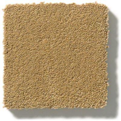 Anderson Tuftex Perfect Choice Barley 00227_ZZ064