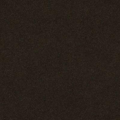 Anderson Tuftex Perfect Choice Fir 00339_ZZ064