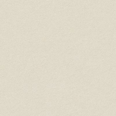 Anderson Tuftex Perfect Choice Sprig 00351_ZZ064