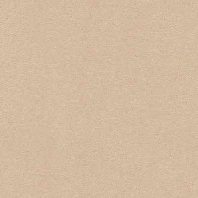 Anderson Tuftex Perfect Choice Cocoa Sand 00773_ZZ064