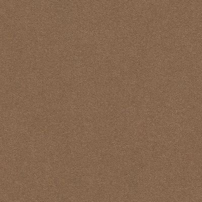 Anderson Tuftex Perfect Choice Mystic Brown 00775_ZZ064