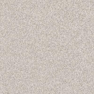 Anderson Tuftex Terra Linda Platinum 00552_ZZ066