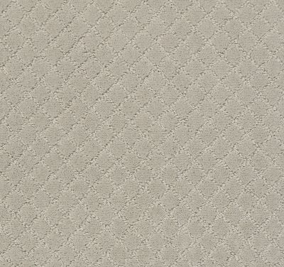 Anderson Tuftex Pawnache Silver Fox 00511_ZZ080