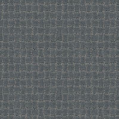 Anderson Tuftex Pawstruck Steel Wool 00545_ZZ081