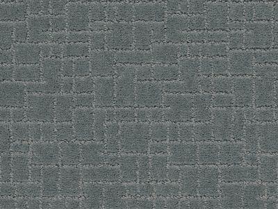 Anderson Tuftex Faux Paw Steel Wool 00545_ZZ084