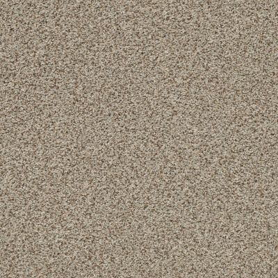 Anderson Tuftex The Bark Side I Sandstone 00272_ZZ087
