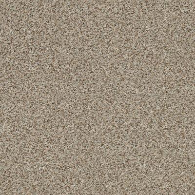 Anderson Tuftex The Bark Side II Sandstone 00272_ZZ088