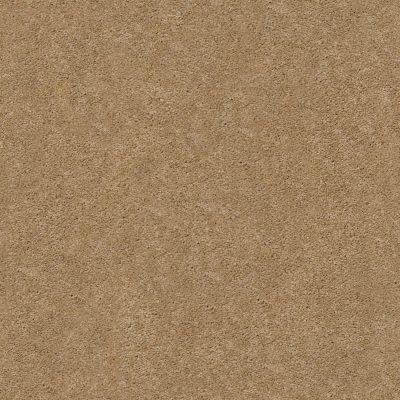 Anderson Tuftex Pawparazzi I Golden Straw 00224_ZZ092