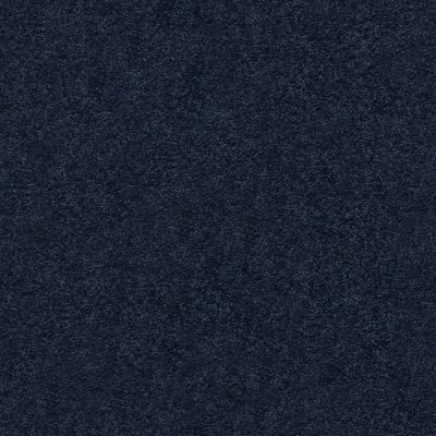 Anderson Tuftex Pawparazzi I Downpour 00445_ZZ092