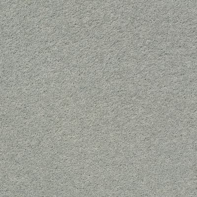Anderson Tuftex Pawparazzi I Misty Lake 00451_ZZ092