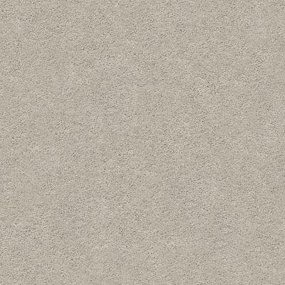 Anderson Tuftex Pawparazzi I Silver Fox 00511_ZZ092