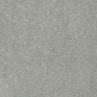 Anderson Tuftex Pawparazzi I Portland 00512_ZZ092