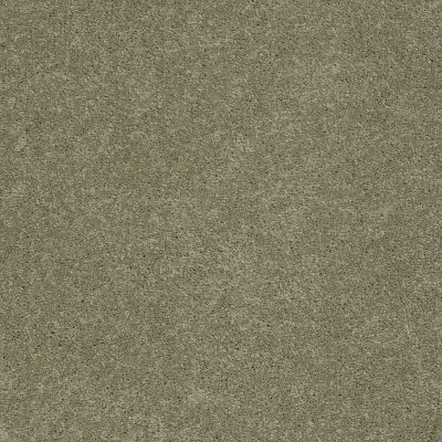 Anderson Tuftex Pawparazzi I Dry Sage 00536_ZZ092