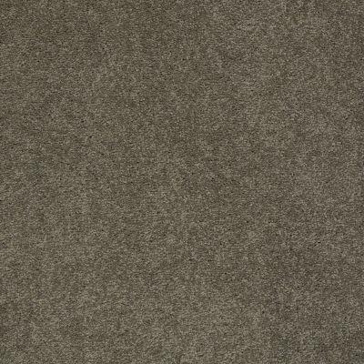 Anderson Tuftex Pawparazzi I Overcoat 00716_ZZ092
