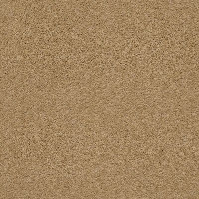 Anderson Tuftex Pawparazzi II Golden Straw 00224_ZZ093