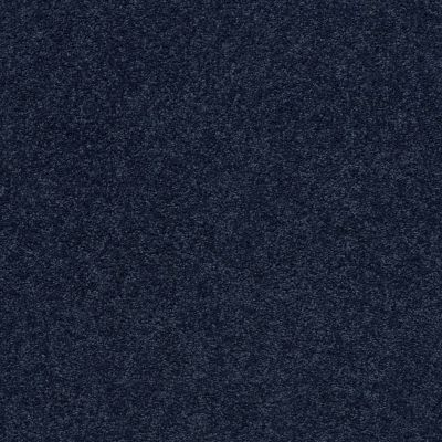 Anderson Tuftex Pawparazzi II Downpour 00445_ZZ093