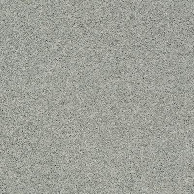 Anderson Tuftex Pawparazzi II Misty Lake 00451_ZZ093