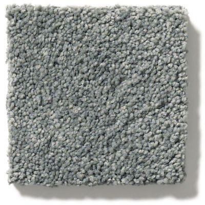 Anderson Tuftex Pawparazzi II Steel Wool 00545_ZZ093