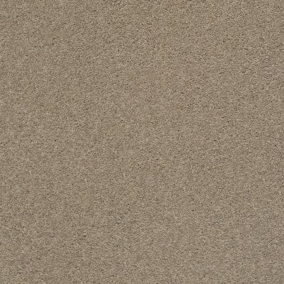 Anderson Tuftex Pawparazzi II Driftwood 00712_ZZ093
