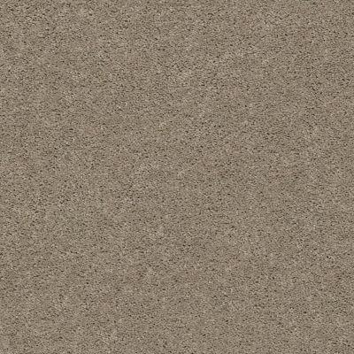 Anderson Tuftex Classics Explorer Dusty Road 00572_ZZ099