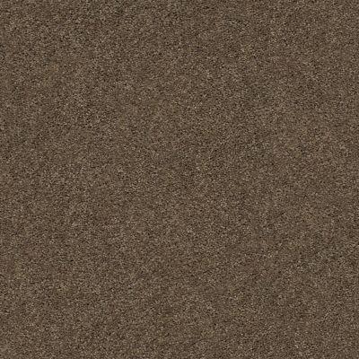 Anderson Tuftex Classics Explorer Free Spirit 00576_ZZ099