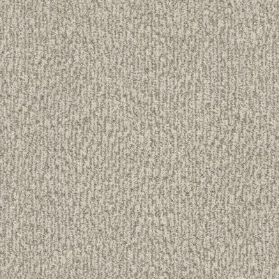 Anderson Tuftex Fur-ever Birch 00173_ZZ218