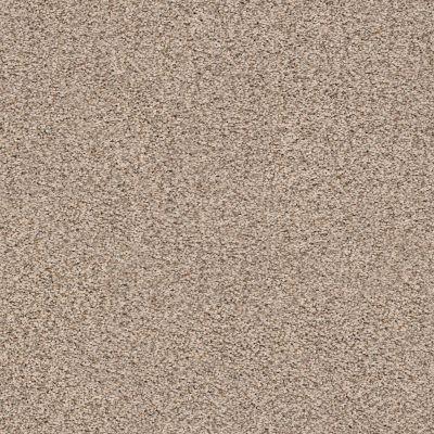 Anderson Tuftex Monarch Desert Tan 0254B_ZZ219