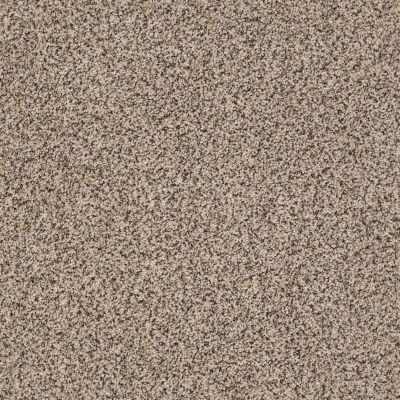 Anderson Tuftex Monarch Desert Sand 0712B_ZZ219