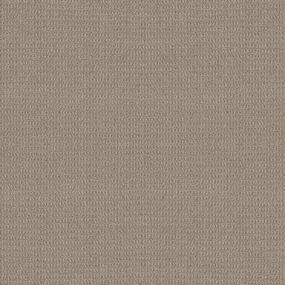 Anderson Tuftex Portofino Pumice 00553_ZZ232