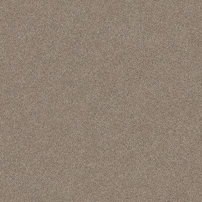 Anderson Tuftex Park Hill Crisp Khaki 0155B_ZZ240