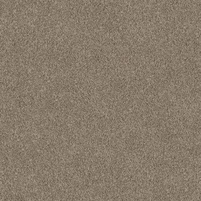 Anderson Tuftex Travertino Too Wet Sand 00725_ZZ241