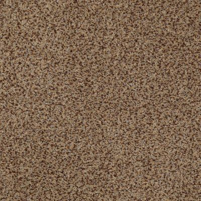Anderson Tuftex American Home Fashions Marsala Sandstorm 00756_ZZA02