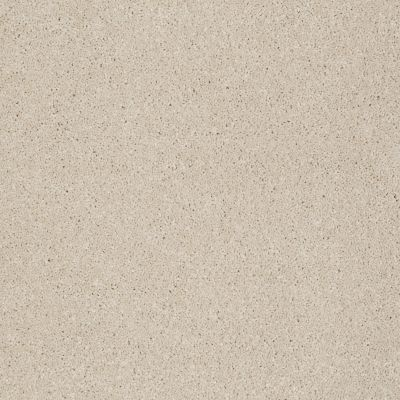 Anderson Tuftex American Home Fashions Real Life II Lambswool 00112_ZZA05