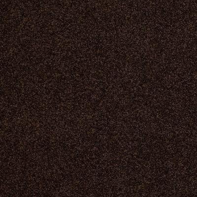 Anderson Tuftex American Home Fashions Belmont Chocolate Drop 00777_ZZA14