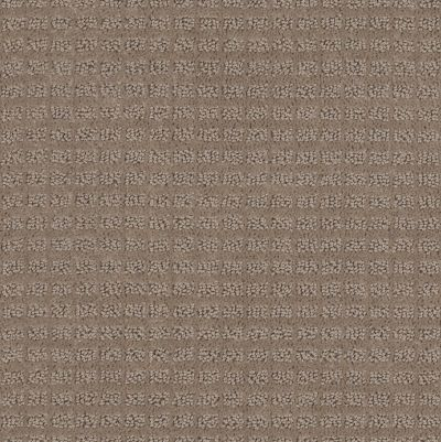 Anderson Tuftex American Home Fashions Urban Alley Powder Puff 00174_ZZA23